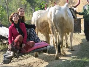 viaje-sola-India-colombiajeros10