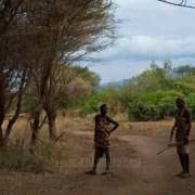 safari-luisbarreto-3-africa-tanzania