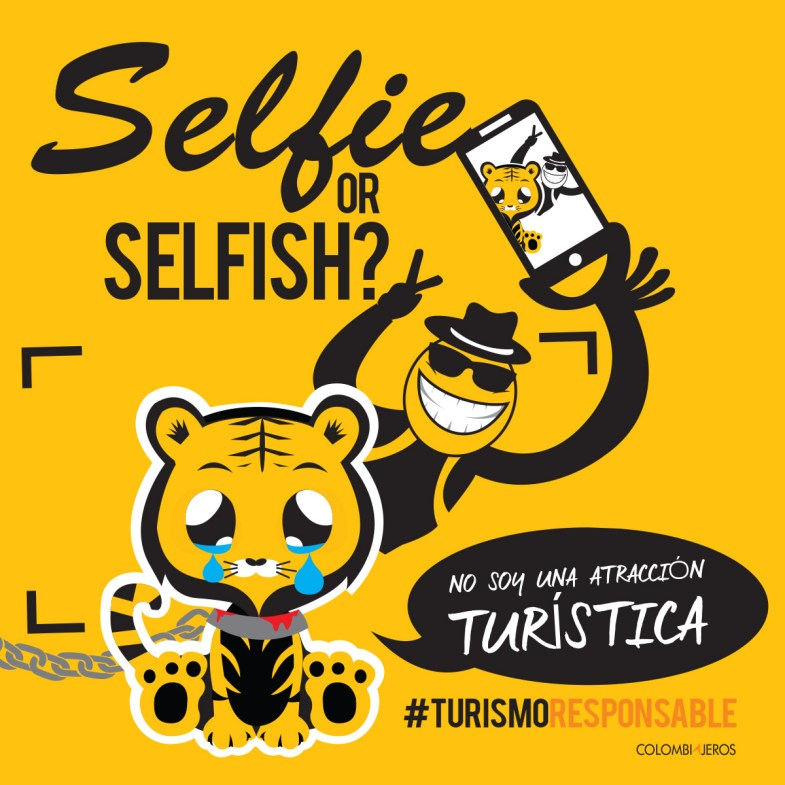 Selfie or Selfish - Turismo Responsable con tigres en Tailandia