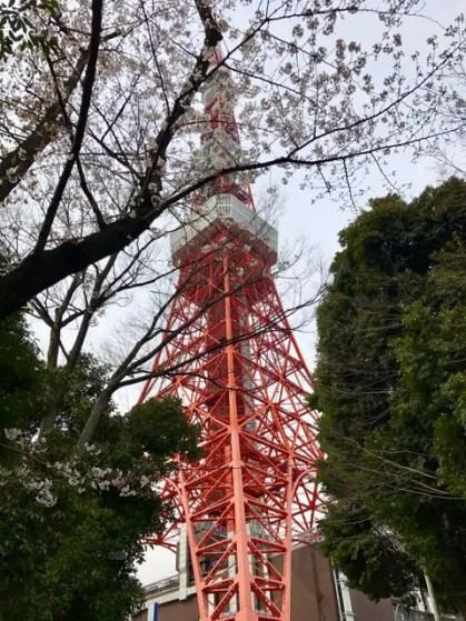 tokio-tokyo-japon-primavera1