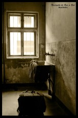 El bloque 11- Auschwitz Polonia
