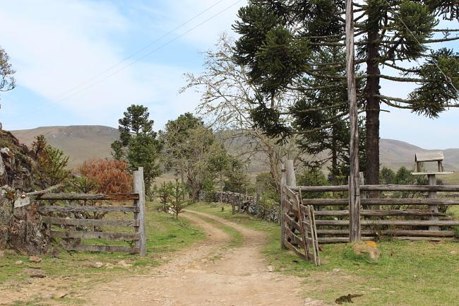 1-viajandoem321-blog-de-viagem-hostel-camping-toca-da-onça-eco-mountain-são-josé-dos-ausentes-rio-grande-do-sul-serra-gaucha