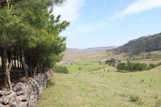 18-viajandoem321-blog-de-viagem-hostel-camping-toca-da-onça-eco-mountain-são-josé-dos-ausentes-rio-grande-do-sul-serra-gaucha