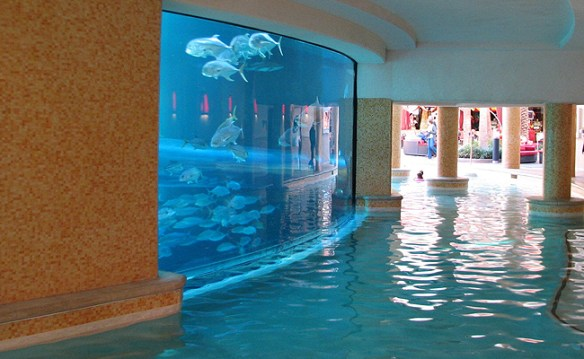 aquário_hotel_las_vegas_4
