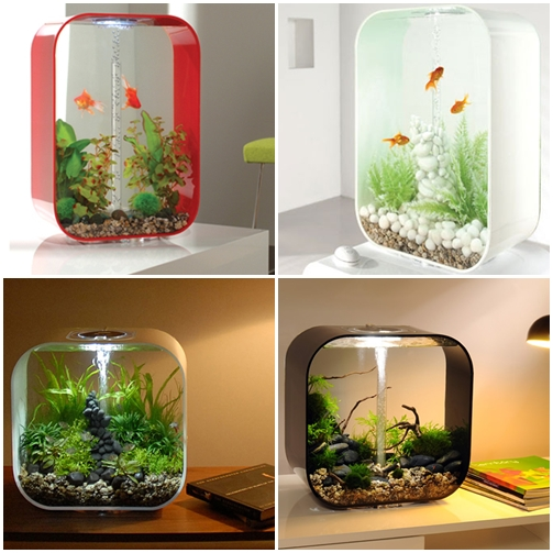 biorb-life_aquario_compacto