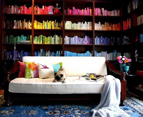 organizacao_livros_por cor