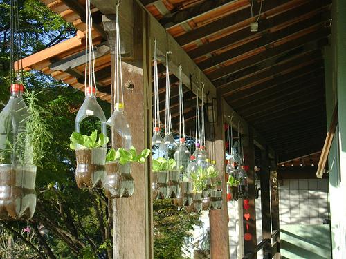 horta-vertical-pendurada suspensas