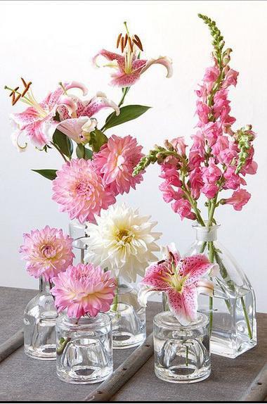 composicao frascos vidro plantas flores