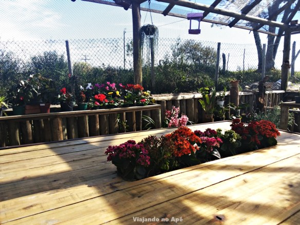 mesa com nicho para plantas decoracao