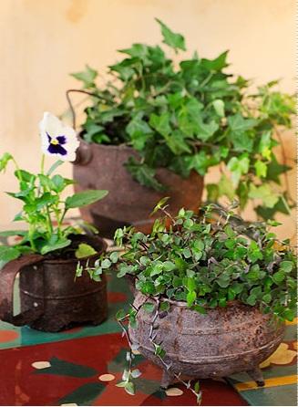 panelas cachepo plantas decoracao