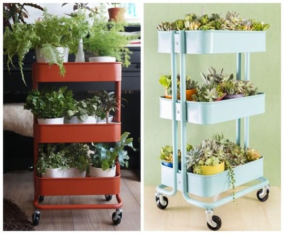 carrinho bar vasos plantas ideias criativas decoracao suculentas
