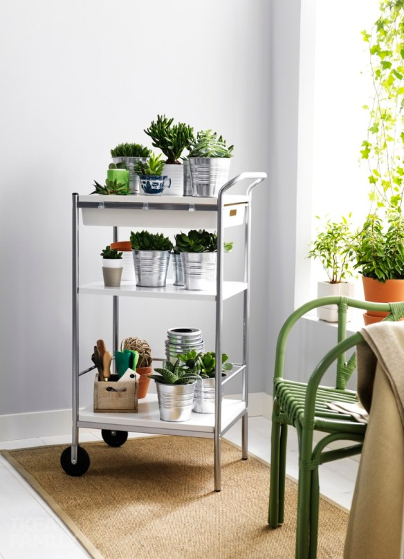 plantas dentro de casa cantinho para plantas carrinho bar cachepos metal