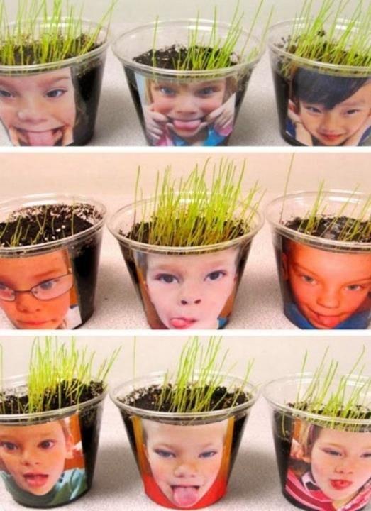 atividades criancas vaso planta criativo cabelo alpiste