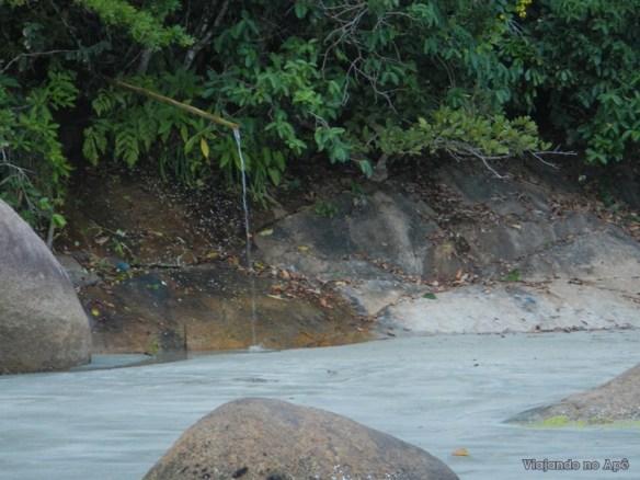 canto da paciencia bica d'agua praia da fazenda ubatuba