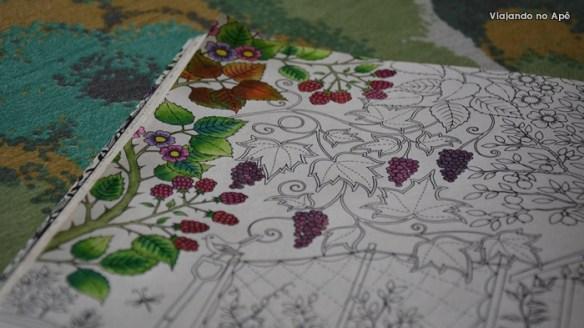 Jardim Secreto Livro de Colorir detalhe