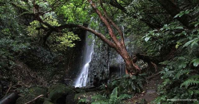 matai falls the Catlins
