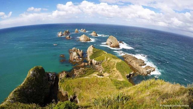 nugget point nueva zelanda The Catlins
