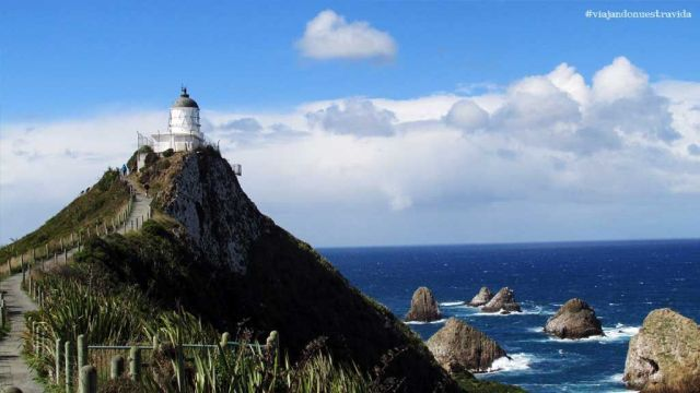 nugget point The Catlins nueva zelanda