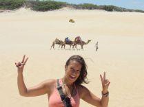 Natal Camellos