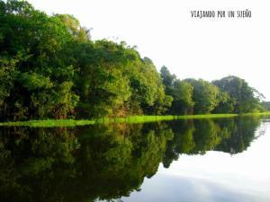Selva Amazónica: El lado salvaje de la naturaleza. ReflejoAgua2