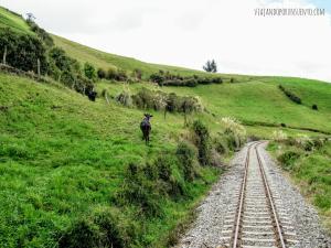 Vias tren Viajando por un sueño quito ecuador