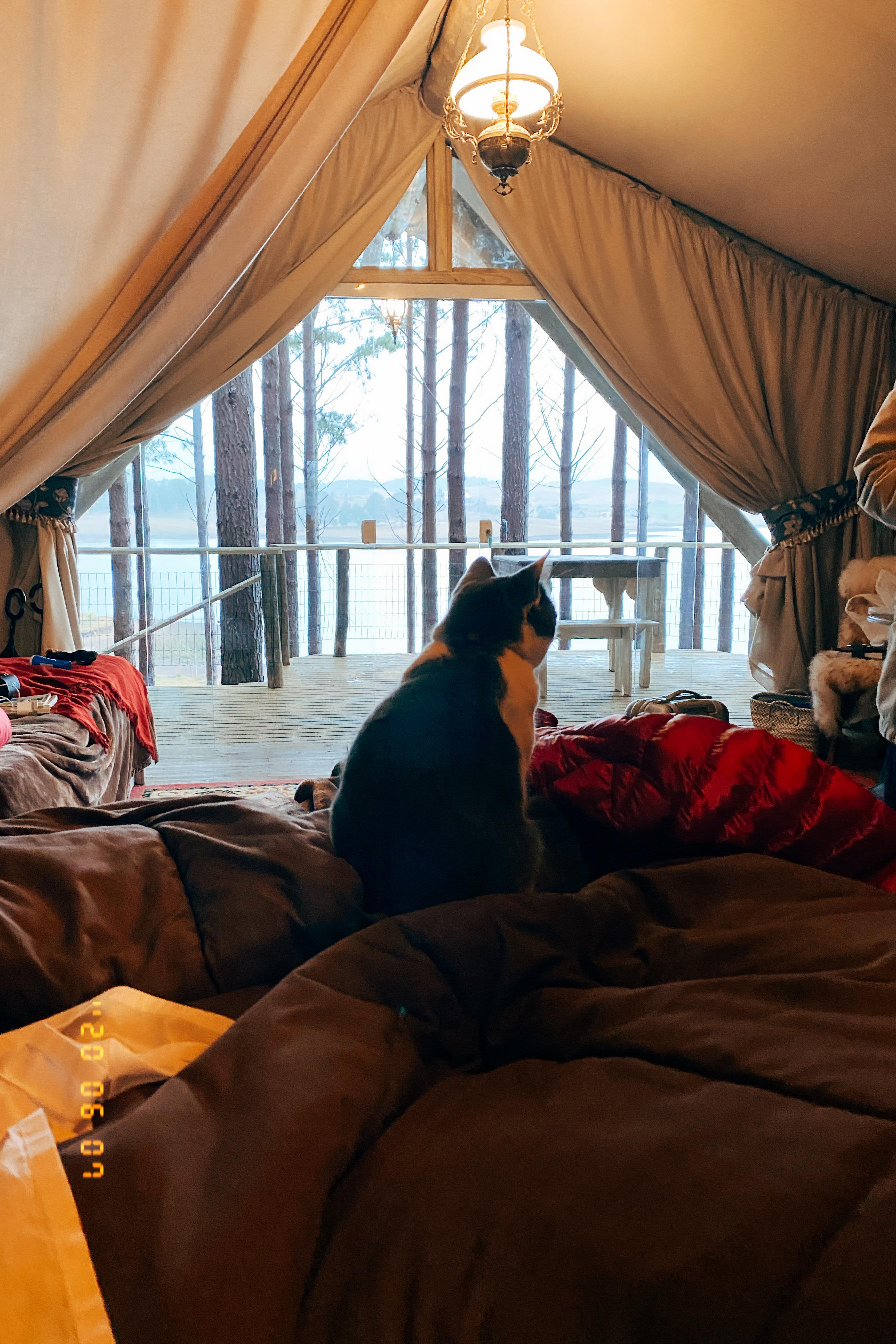 A Tenda Master e a Mia