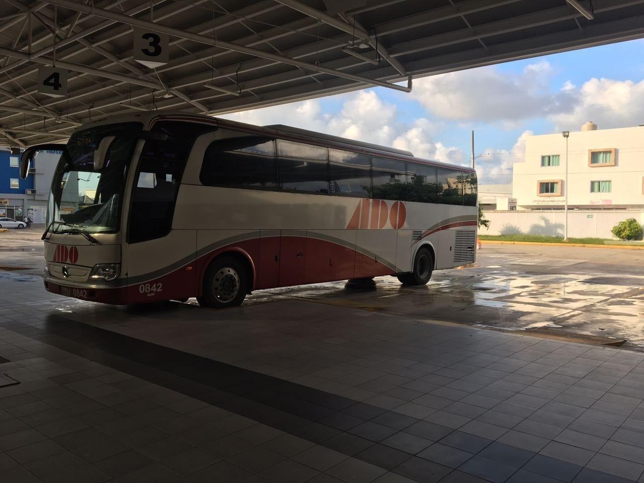 Cómo funcionan los autobuses en Riviera Maya