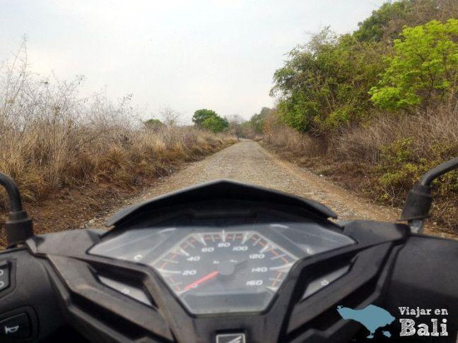 Moto-parque.nacional-Bali-Barat