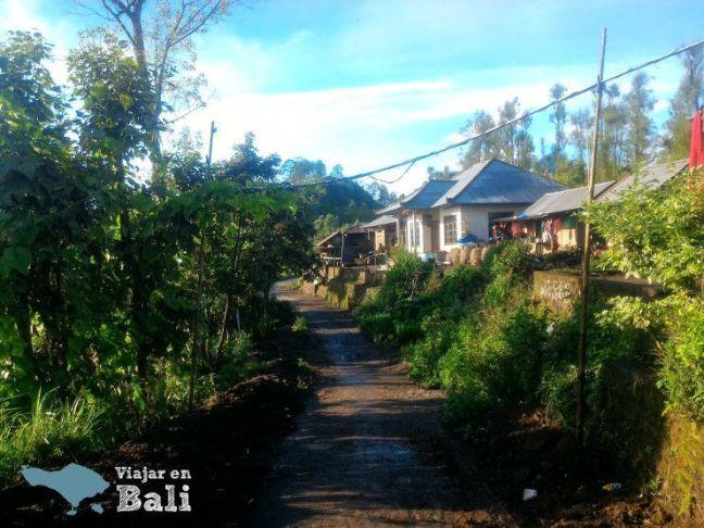 camino volcan bali