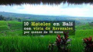 Hoteles Ubud con vistas de arrozales