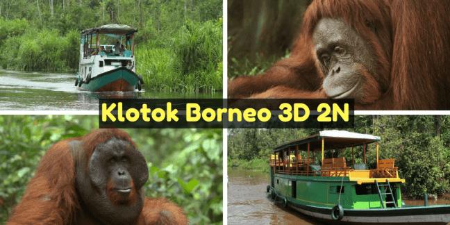 Excursion barco klotok Borneo