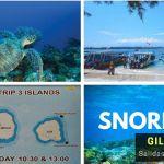 Excursiones de Snorkeling en las Islas Gili