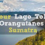 Tour Bukit Lawang y Lago Toba (Sumatra)