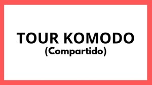Tour Komodo Compartido