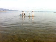 Un gran equipo de pescadores