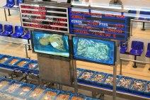 subasta-pescado-sant-carles-rapita