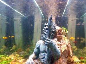 Figura de Neptuno en la pecera