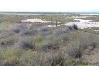 paisaje-naturaleza-punta-de-la-banya