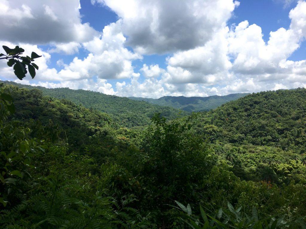 Mirador desde el sendero Centinelas del Río Melodioso
