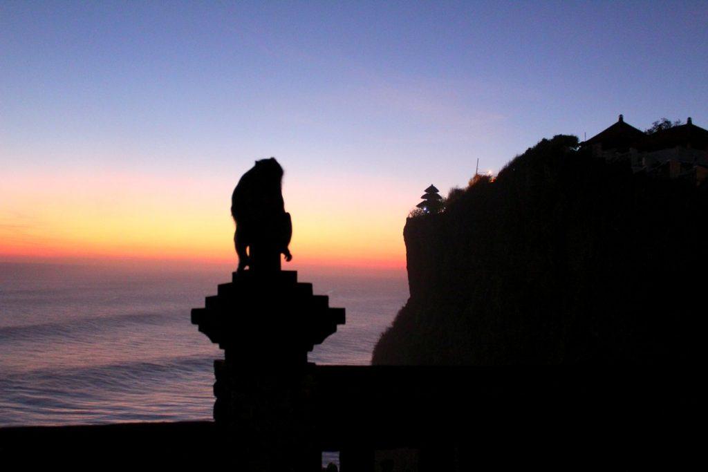 Fotón a un mono en el templo de Uluwatu
