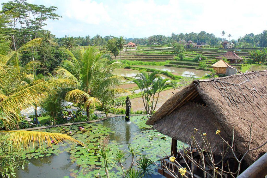 Las bonitas vistas del Karsa Café, Ubud