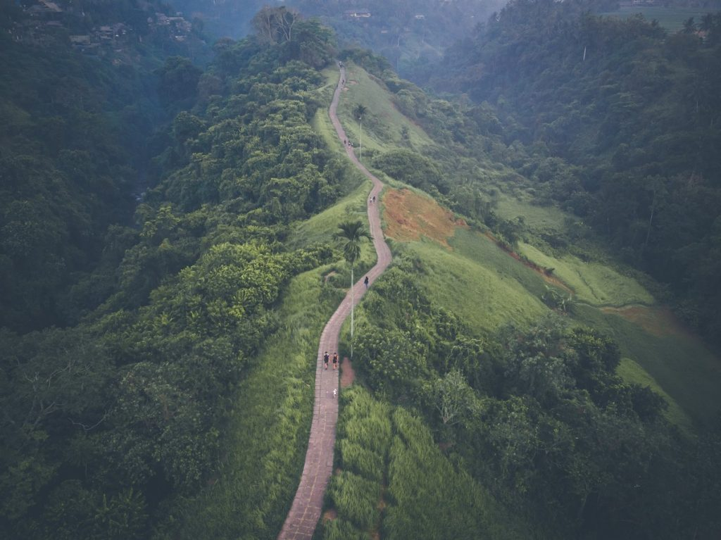 Vistas aéreas de Campuhan Rige Walk, en Ubud