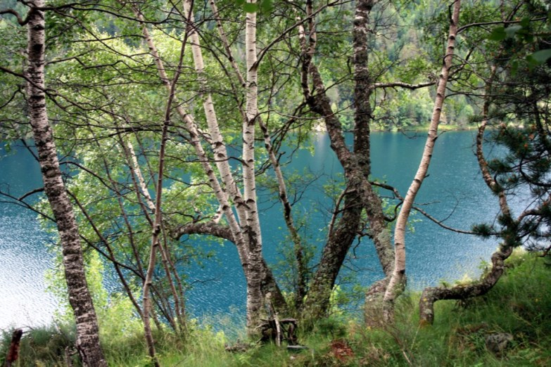 Lago San Mauricio 06