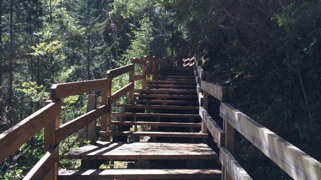Excursion a Puerto Blest y Cascada de los Cantaros Bariloche