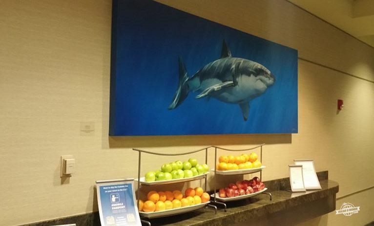 Bancadinha com frutas no Admirals Club D-30 Miami