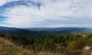 Ursos negros perto de Washington? Conheça o Parque Nacional de Shenandoah!