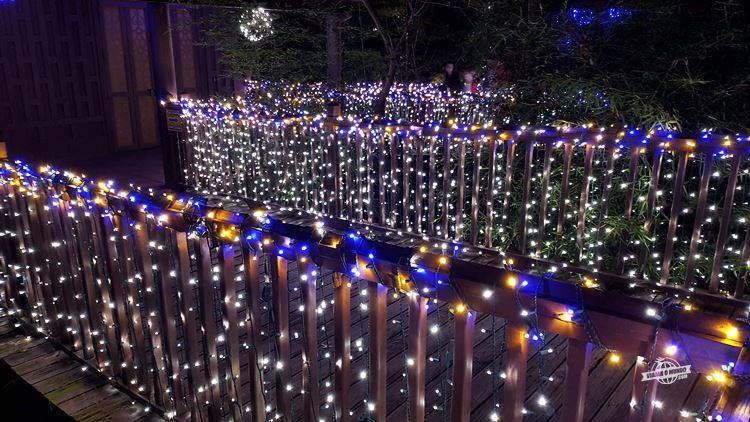 Iluminação de Natal - Dallas Zoo