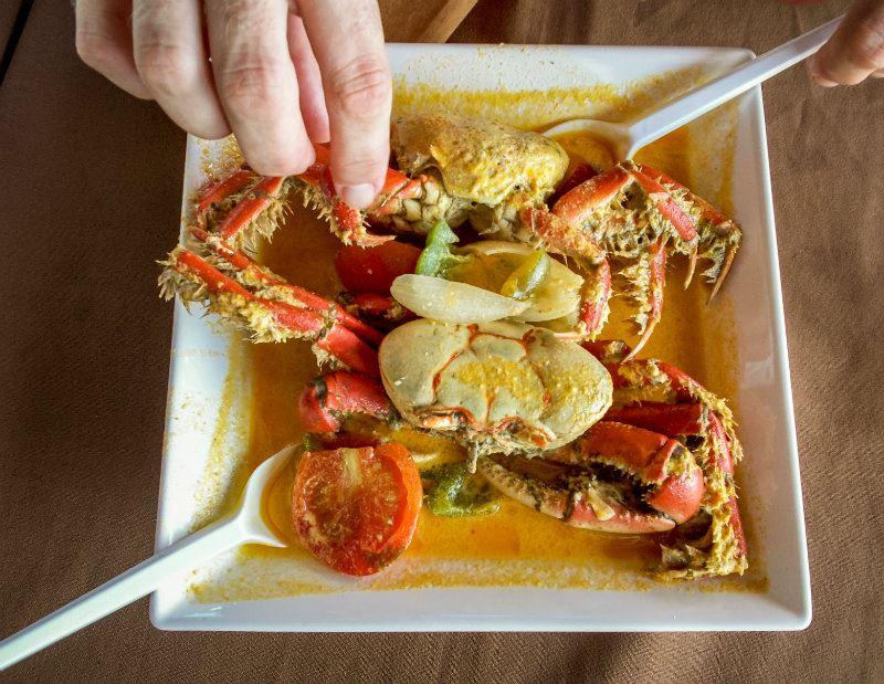 O camarão é um dos principais pratos da região - Turismo em Florianópolis - Publieditorial
