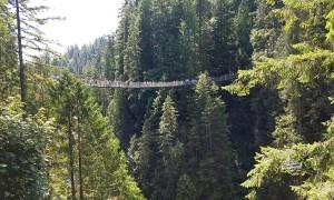 Conheça o Capilano Suspension Bridge Park
