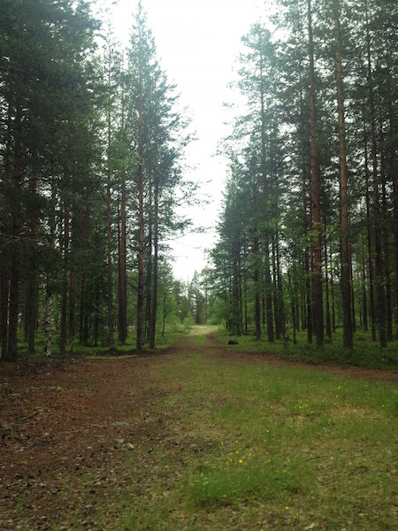 Espoo Parque Finlandia